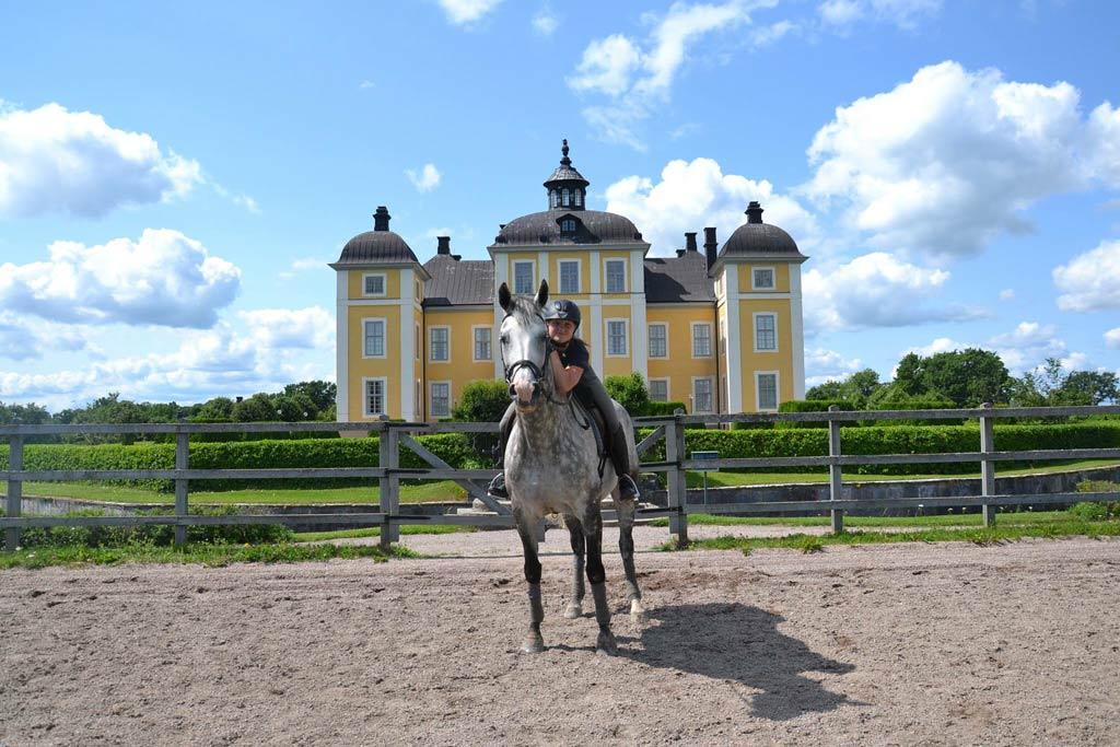 Strömsholms slott med häst